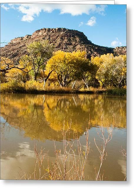 Geobob Greeting Cards - Kolob Pond Reflection Virgin Utah Greeting Card by Robert Ford