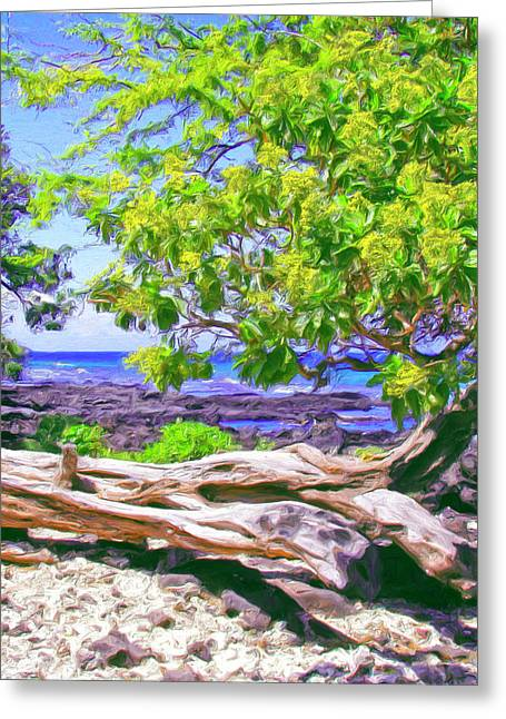 Lahaina Greeting Cards - Kona Coast Greeting Card by Dominic Piperata