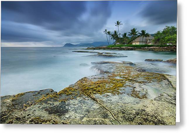 Top Seller Greeting Cards - Koolina Greeting Card by Tin Lung Chao