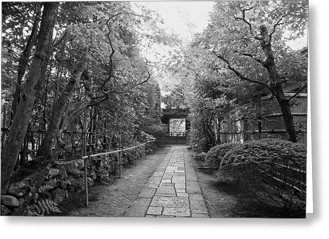 Recently Sold -  - Bamboo Fence Greeting Cards - Koto-in Temple Stone Path Greeting Card by Daniel Hagerman
