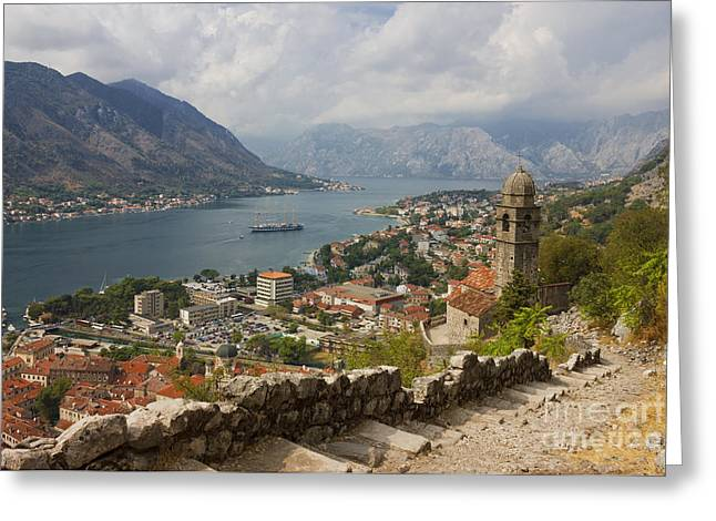 Boat Cruise Greeting Cards - Kotor Panoramic View From the Fortress Greeting Card by Kiril Stanchev