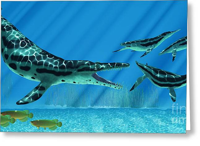 Sea Creature Pictures Greeting Cards - Kronosaurus Marine Reptile Greeting Card by Corey Ford