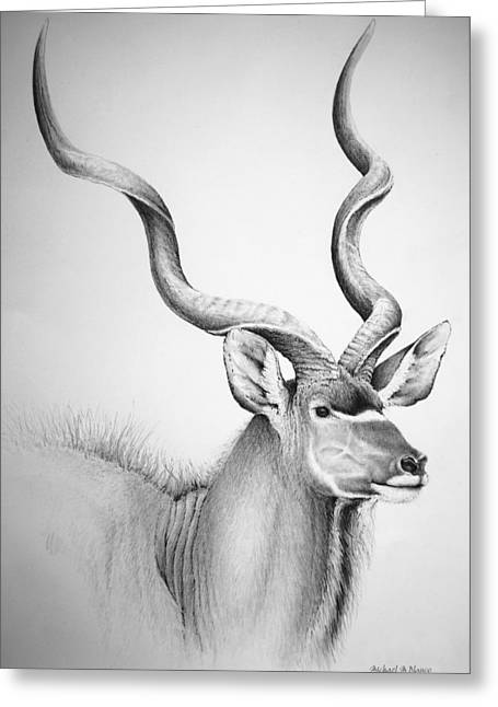 Graphite Digital Greeting Cards - Kudu Bull Greeting Card by Michael Blanco