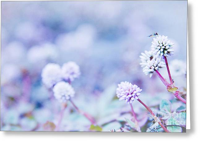 Texture Floral Greeting Cards - Kula White Greeting Card by Sharon Mau