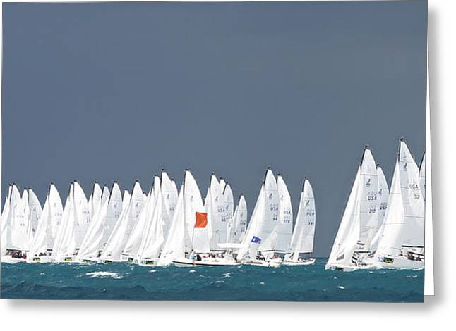Penn Cove Greeting Cards - Kwrw 2014 Greeting Card by Steven Lapkin