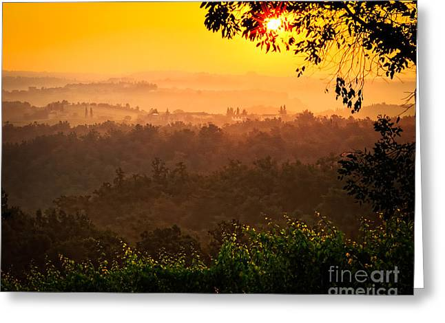 Vineyard Landscape Greeting Cards - La Bella Toscana Greeting Card by Inge Johnsson