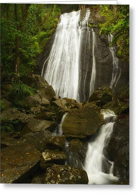 Coqui Greeting Cards - La Coca Falls  Greeting Card by Photography  By Sai