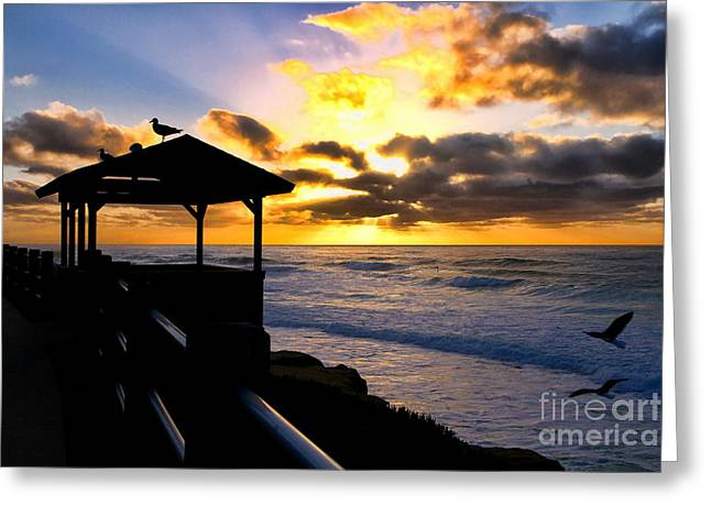 La Jolla At Sunset By Diana Sainz Greeting Card by Diana Sainz