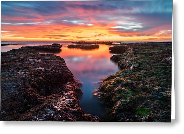 La Jolla California Reflections Greeting Card by Larry Marshall