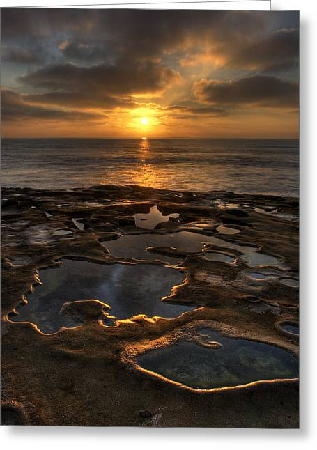 Tide Pools Greeting Cards - La Jolla Tidepools Greeting Card by Peter Tellone