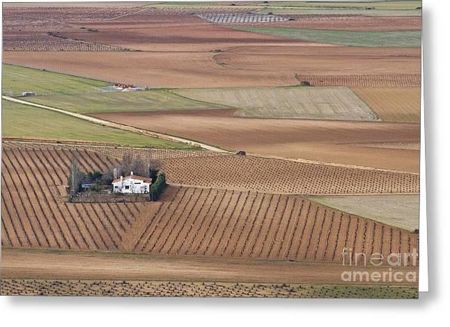 Mancha Greeting Cards - La Mancha Landscape - Spain Series-quatro Greeting Card by Heiko Koehrer-Wagner