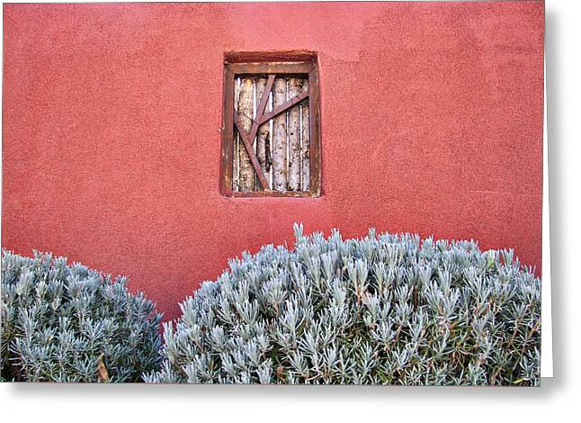 New Mexican Greeting Cards - La Pared #2 Greeting Card by Nikolyn McDonald