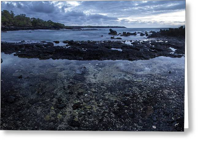 Perouse Greeting Cards - La Perouse Tide Pools Greeting Card by Brad Scott
