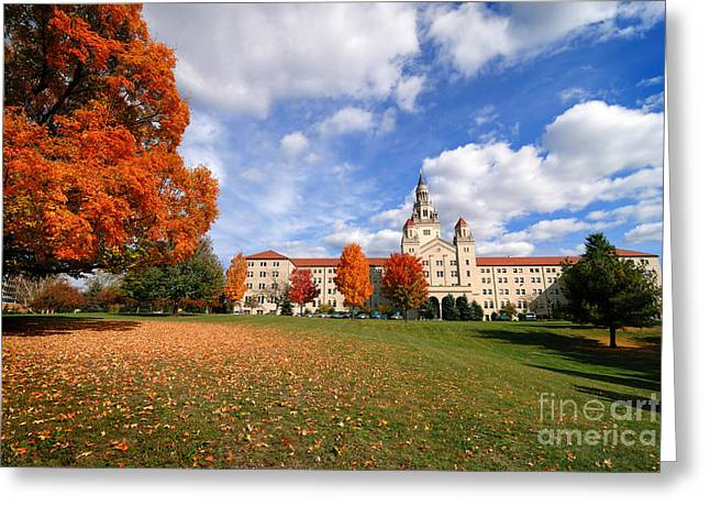 Height Greeting Cards - La Roche College on a Fall Day Greeting Card by Amy Cicconi