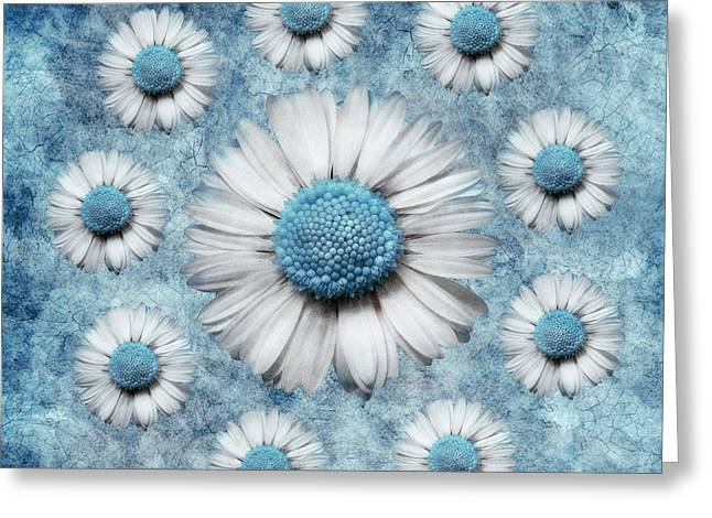 Aimelle Prints Greeting Cards - La Ronde Des Marguerites - Blue v02 Greeting Card by Variance Collections