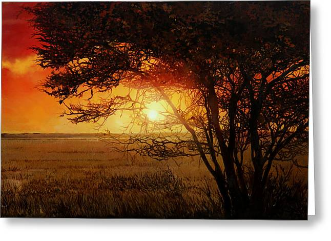 Beatles Paintings Greeting Cards - La Savana Al Tramonto Greeting Card by Guido Borelli