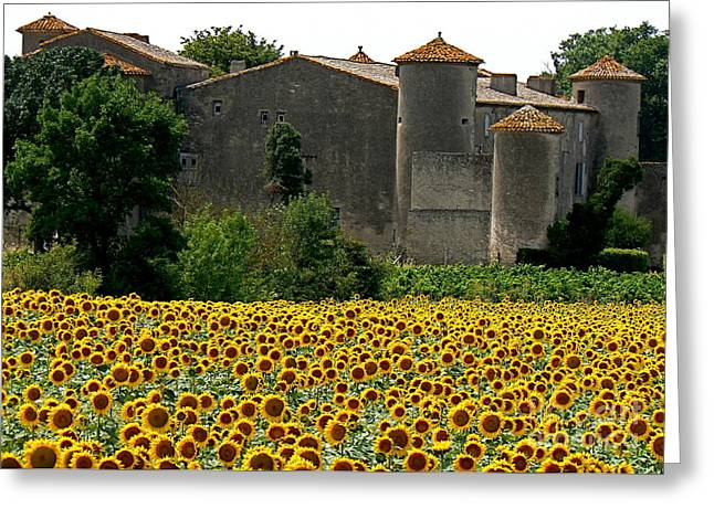 Wine Tour Greeting Cards - La Vie est Belle Greeting Card by France  Art