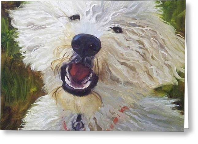 White Dogs Greeting Cards - Labradoodle Greeting Card by Alice Leggett