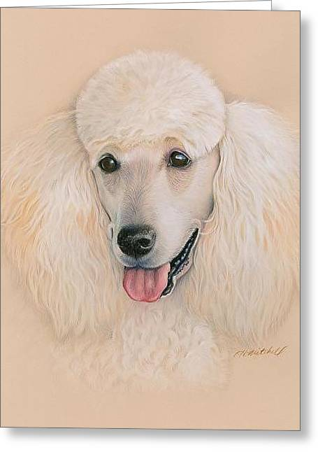 Puppies Drawings Greeting Cards - Labradoodle Do Greeting Card by Heather Mitchell