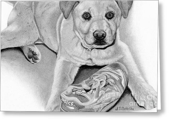 Labs Drawings Greeting Cards - Sneaker Snatcher- Labrador and Chow Chowx Mix Greeting Card by Sarah Batalka