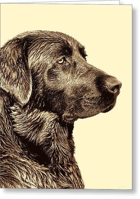 Old Labrador Greeting Cards - Labrador Retriever Dog in Sepia Greeting Card by Jennie Marie Schell