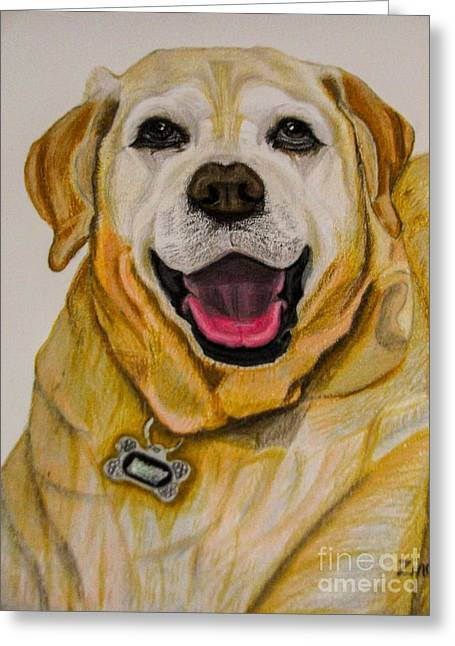Labrador Retriever Drawing Greeting Card by Zina Stromberg