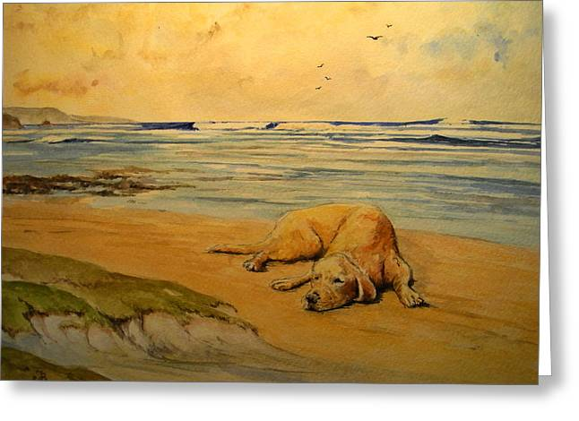Labrador Retriever In The Beach Greeting Card by Juan  Bosco
