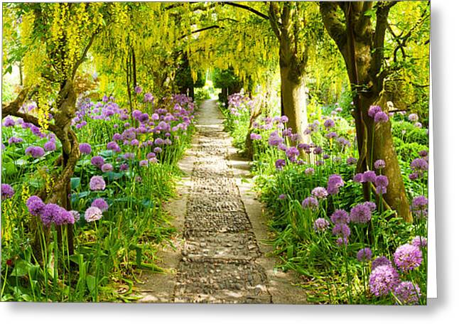 Garden Scene Photographs Greeting Cards - Laburnum Trees At Barnsley House Greeting Card by Panoramic Images
