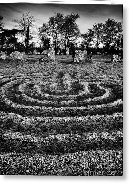 Labyrinth Greeting Cards - Labyrinth at Rollright Greeting Card by Tim Gainey