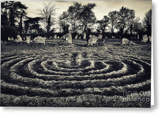 Labyrinth Greeting Cards - Labyrinth Greeting Card by Tim Gainey