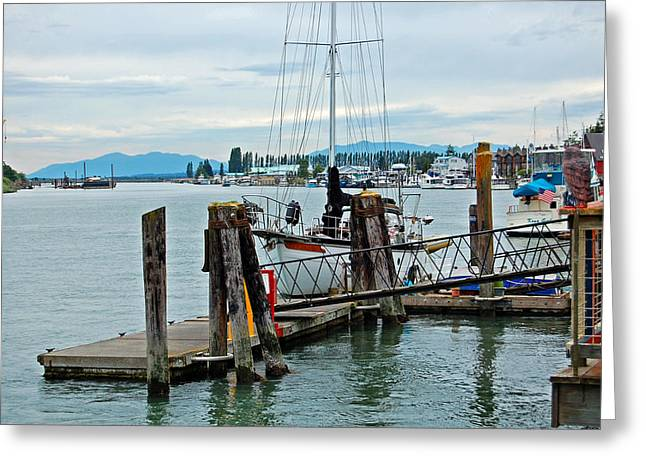 Randall Templeton Greeting Cards - LaConnor Harbor Greeting Card by Randall Templeton