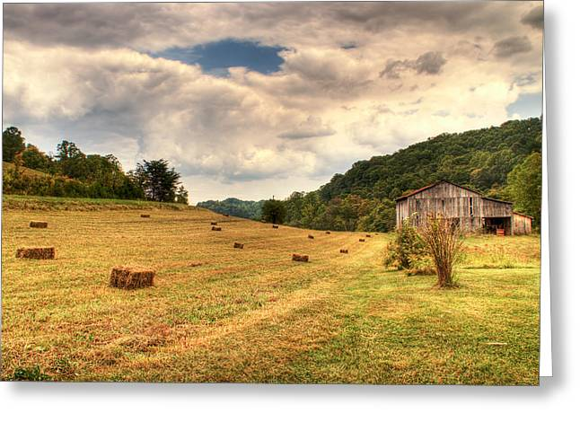Lacy Farm Morgan County Kentucky Greeting Card by Douglas Barnett