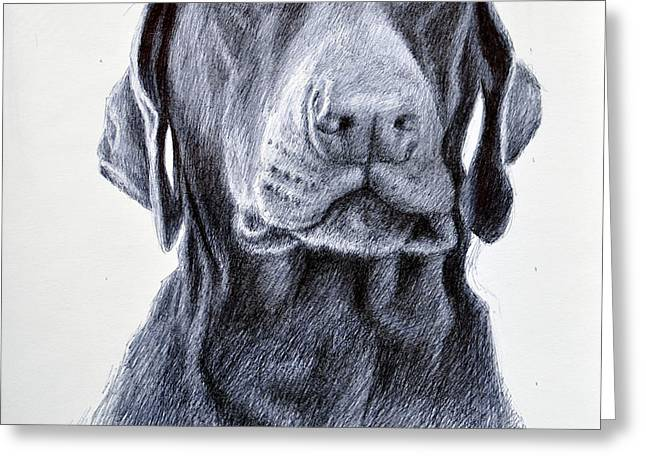 Award Winning Art Drawings Greeting Cards - Lacys Look Greeting Card by Rick Hansen