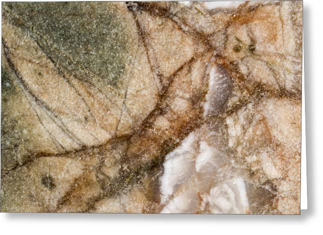 Lady In The Rock Greeting Card by Jean Noren