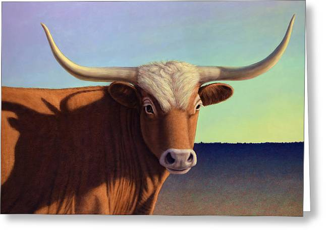 Texas Longhorn Cow Greeting Cards - Lady Longhorn Greeting Card by James W Johnson