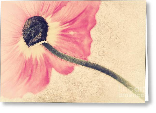 Lady Poppy II Greeting Card by Angela Doelling AD DESIGN Photo and PhotoArt