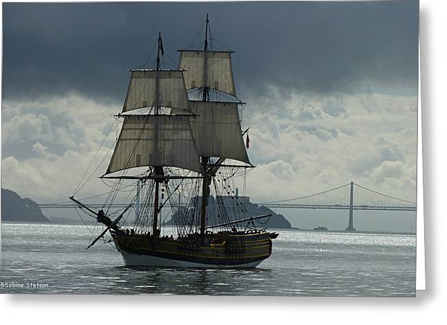 Sabine Stetson Photographs Greeting Cards - Lady Washington Greeting Card by Sabine Stetson