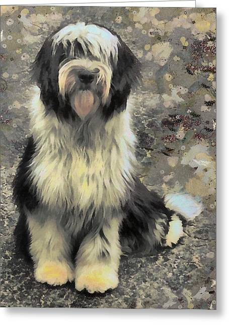 Collie Mixed Media Greeting Cards - Lady Zelda Greeting Card by Janice MacLellan