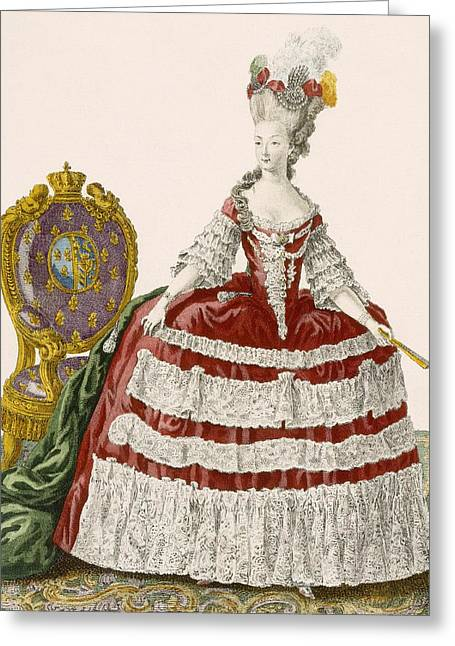 Powder Drawings Greeting Cards - Ladys Court Gown In Dark Cherry Greeting Card by Pierre Thomas Le Clerc