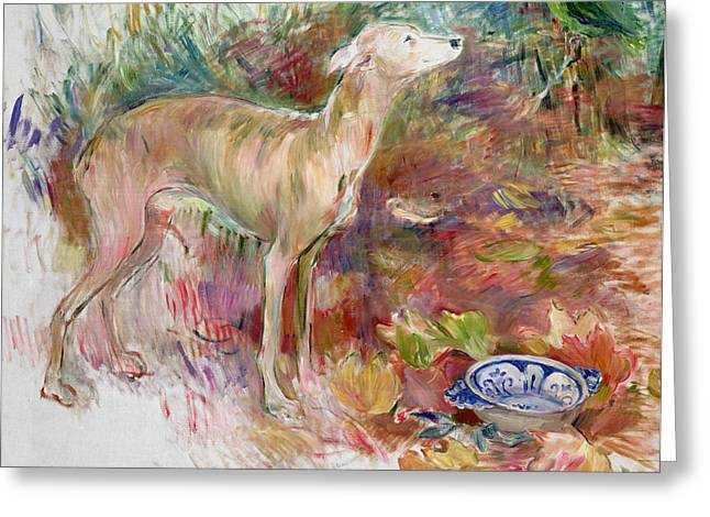 Doggie Art Greeting Cards - Laerte the Greyhound Greeting Card by Berthe Morisot