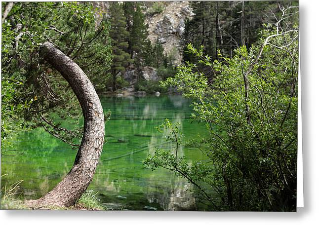 Green Transparency Greeting Cards - Lago verde Greeting Card by A Rey