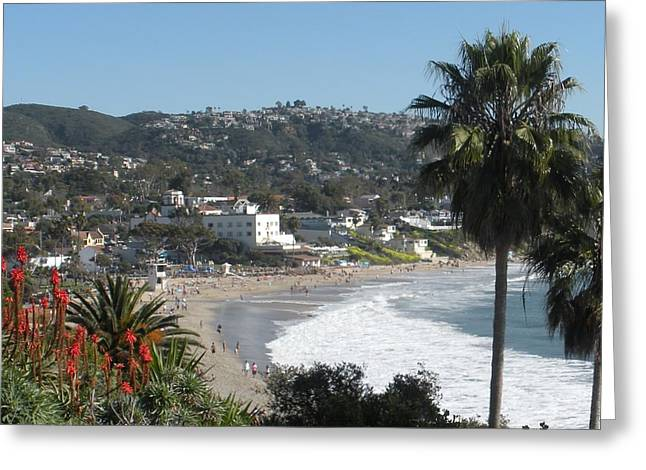 Heisler Park Greeting Cards - Laguna Beach - Main Beach  Greeting Card by Kristy  Morris