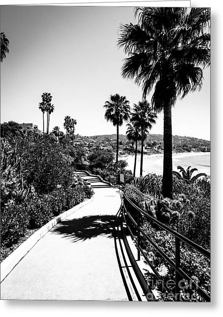 Laguna Beach Heisler Park In Black And White Greeting Card by Paul Velgos