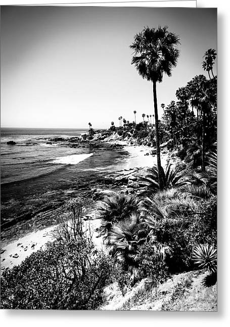 Tree Photo Greeting Cards - Laguna Beach Pacific Ocean Shoreline in Black and White Greeting Card by Paul Velgos