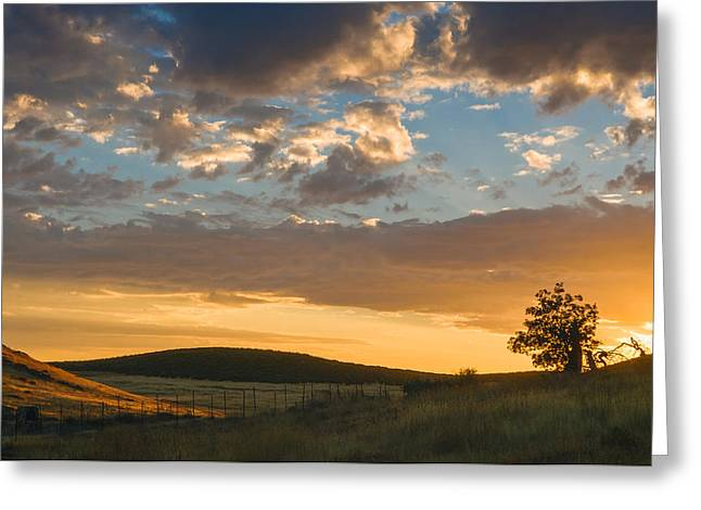 Sunrise Greeting Cards - Laguna Sunrise Greeting Card by Joseph Smith