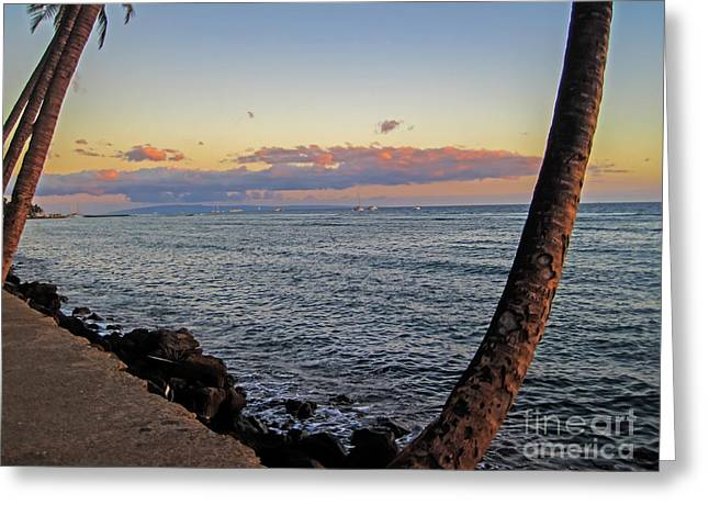 Lahaina Greeting Cards - Lahaina Harbor Greeting Card by Baywest Imaging