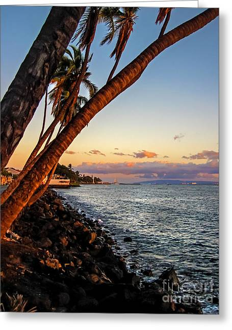 Lahaina Greeting Cards - Lahaina Palms Greeting Card by Baywest Imaging