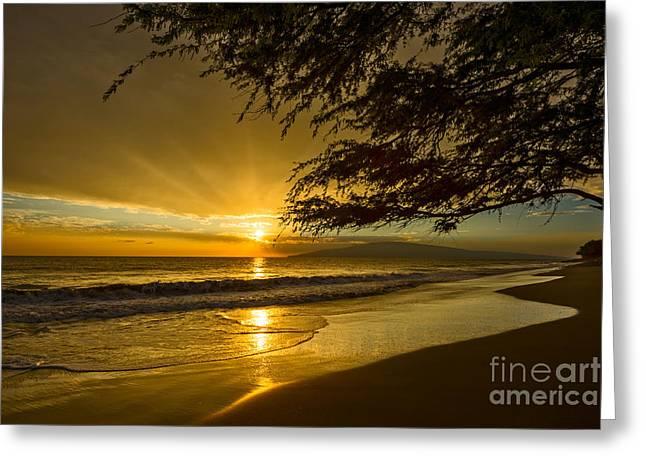Lahaina Greeting Cards - Lahaina Sun Burst Greeting Card by Jamie Pham