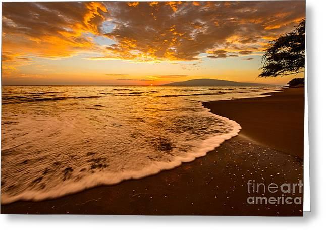 Lahaina Greeting Cards - Lahaina Wave Greeting Card by Jamie Pham