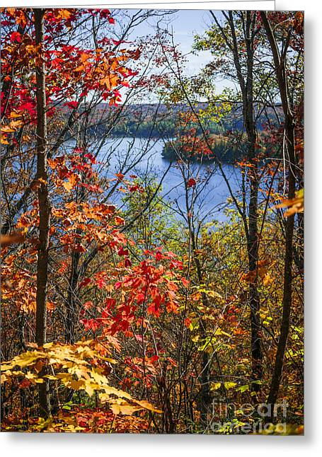 Algonquin Greeting Cards - Lake and fall forest Greeting Card by Elena Elisseeva